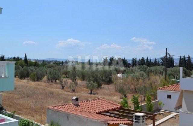Аренда апартаментов в греции у собственника